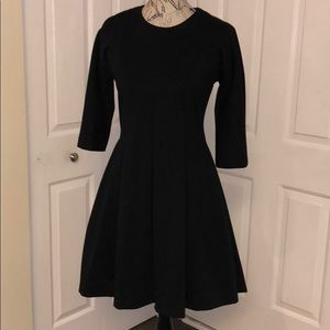 Gap Fit and Flare Dress with Pockets